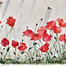 Poppies Snails and  Shadows by mariohipolito