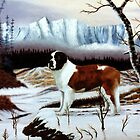 St. Bernard in snow by John Marcum