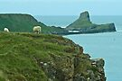 Gower Peninsula & Worms Head by Yukondick
