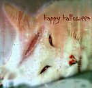 Beautiful Dreamer Halloween Greeting Card by Scott Mitchell