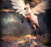 I Am Pegasus by Vanessa Barklay