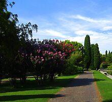 Flowered Path - Sigurtà - Italy by sstarlightss