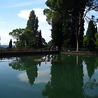The Turtles Pool - Sigurtà - Italy by sstarlightss