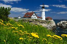 Portland Head Light and Summer Flowers by Mark Van Scyoc