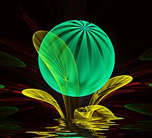 Bubble Plant by Pam Amos