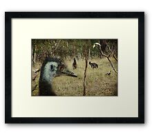 ~ The Gathering ~ Framed Print