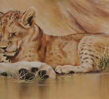 Lion cub on mum's tum 2 by Tom Godfrey