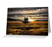 Another Day Of Glory ~ Sand Point, Oregon, USA Greeting Card