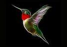 Medicine Wheel Totem Animals by Liane Pinel- Hummingbird by Liane Pinel