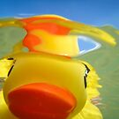 Rubber Duckie Snorkeling by John Hartung