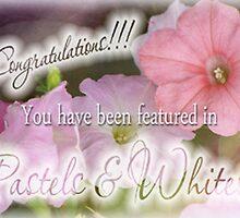banner for Pastels & Whites by vigor