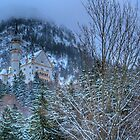 Neuschwanstein Castle In Germany by sarchuk63