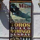 Toros Domingo by Allen Lucas