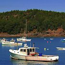 Bar Harbor by Kathleen Struckle