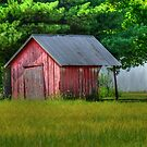 Little Red Shed by Sheryl Langston