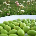 Edamame on a Plate in the Grass by micala
