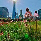 Millenium Park by Brian HMUROVICH