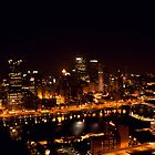 Pittsburgh City Lights from Grandview by dgweathers