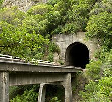 Ohau Stream, Rail Bridge and Tunnel by Belinda Osgood