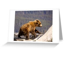 On The Run - Alaska  Greeting Card