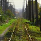 The Old Tracks by Michael Lucas
