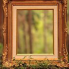 Nature Framed by Michael Lucas