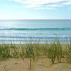 morning beach by Leigh Kerr