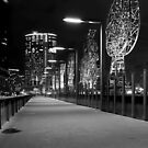Melbourne at Night #08 by peterperfect