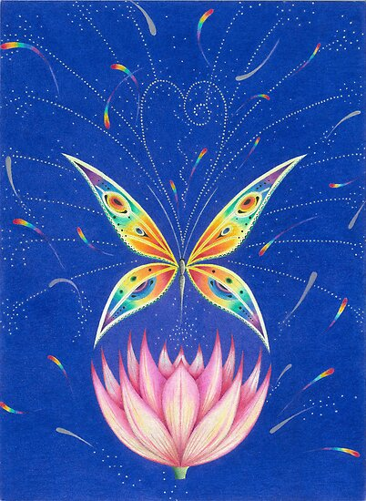Lotus Butterfly by Gill Rippingale