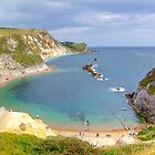 Man O War Bay (Spot the Seagull 2) by Colin J Williams Photography