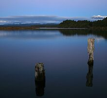 okarito lagoon  south westland  nz by rina  thompson