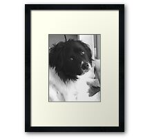 Is Dad EVER coming home? Framed Print