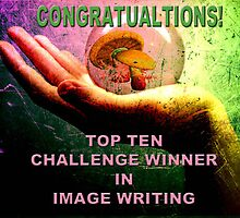IMAGE WRITING TOP TEN CHALLENGE BANNER by Tammera
