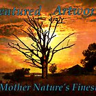 Mother Nature's Finest Feature Banner by Stephanie Reynolds