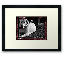 Levi and His Toy Framed Print