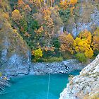 Kawarau River by Carolina Couto
