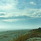Georgia Coast Jekyll Island Beach by BenSellars