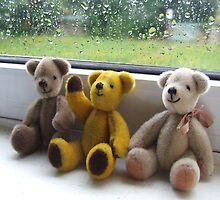 Bears on a Wet Thursday by Joan Glen-Martin