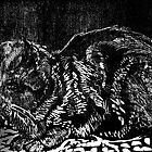 Black & White Woodcut, snoozing cat by Pat  knight
