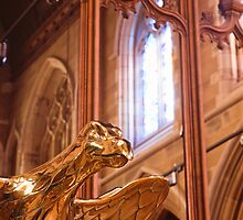 Detail, Saint David's Cathedral, Hobart by Brett Rogers