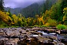 A Place In Your Heart ~ Lake Creek ~ by Charles & Patricia   Harkins ~ Picture Oregon