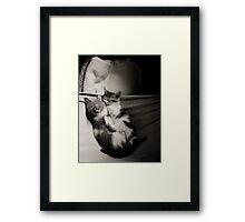 Rest Time Framed Print