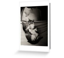 Rest Time Greeting Card