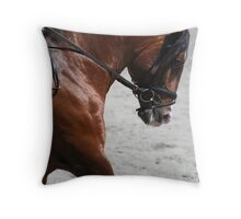 Ali-Baba ~ Lusitano Stallion Throw Pillow