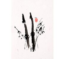 Sumi-e Bamboo Photographic Print