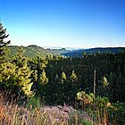 Malahat View (vertical panorama) by James Zickmantel