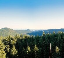 Grand Viewpoint (panorama) by James Zickmantel
