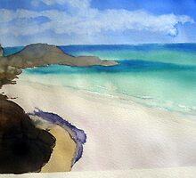 Little waterloo Bay , just like Tahiti. by taariqhassan