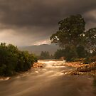 Winding river through Elandsvlei by Gustav Snyman