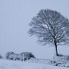 Its cold outside by Brendan Brennan